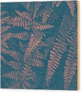 Looking At Ferns Another Way Wood Print