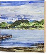 Looking At Morro Bay  Wood Print
