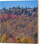 Looking At The Top Of Bald Mountain Wood Print