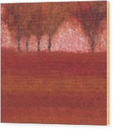 Looking At The World Through Rose Colored Lenses Wood Print