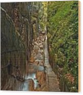 Looking Down Flume Gorge Wood Print