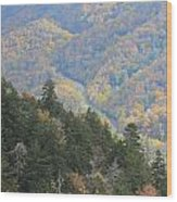 Looking Down On Autumn From The Top Of Smoky Mountains Wood Print