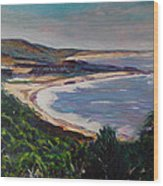 Looking Down On Half Moon Bay Wood Print