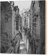 Looking Down On Internal Walkways From Upper Tier Of Old Roman Colloseum El Jem Tunisia Vertical Wood Print