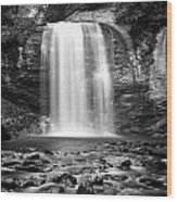 Looking Glass Falls Number 20 Wood Print