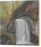 Looking Glass Falls Wood Print by William Killen