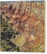 Looking Into The South Rim Wood Print