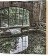 Looking Out 2 - Paradise Springs Spring House Interior  Wood Print