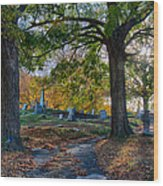 Looking Over The Hill Wood Print