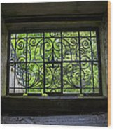 Looking Through Old Basement Window On To Vibrant Green Foliage Fine Art Photography Print  Wood Print
