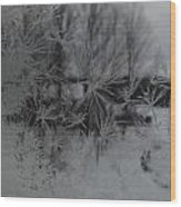 Looking Through The Frost I Wood Print