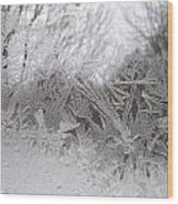 Looking Through The Frost Iv Wood Print