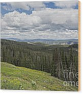 Looking To The Canyon - Yellowstone Wood Print