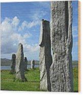 Looking West At Callanish Wood Print