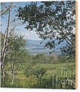 Lookout From Guardsman's Pass Wood Print