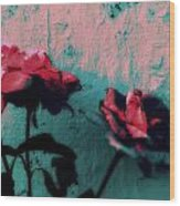 Looks Like Painted Roses Abstract Wood Print