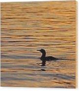 Loon At Sunset 6958 Wood Print