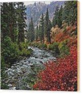 Loon Creek In Fall Colors Wood Print