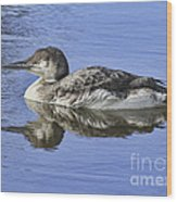 Loon On Vacation Wood Print