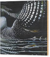 Loon Reflections Wood Print by Lynette Yencho
