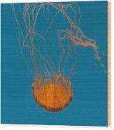 Loop To Loop Orange Nettle Wood Print