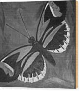 Lord Of The Butterfly Wood Print