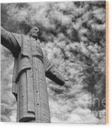 Lord Of The Skies 3 Wood Print