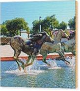 Los Colinas Mustangs 14698 Wood Print