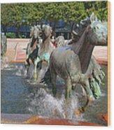 Los Colinas Mustangs 14710 Wood Print