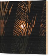 Lost And Found In Sunset Land Wood Print