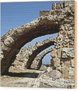Lost City Of Salamis Cyprus  Wood Print