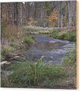 Lost Creek Wood Print by Cindy Rubin