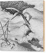 Lost Deer Wood Print