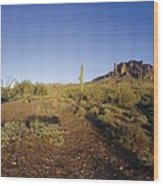 Lost Dutchman Park Supestition Mountains Wood Print