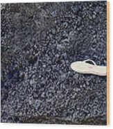 Lost Flip Flop On Lava Rock Wood Print