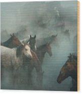Lost Horses Wood Print