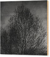 Lost In Moments Wood Print
