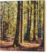 Lost In No Where Wood Print