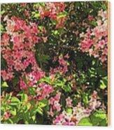 Lost In Pink Wood Print