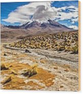 Lost In The Bolivian Desert Framed Wood Print