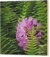 Lost In The Fern Garden Wood Print