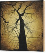 Lost In The Forest I Broke Off A Dark Twig And Lifted Its Whisper To My Thirsty Lips Wood Print