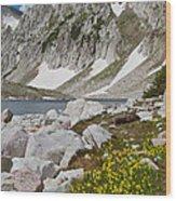 Lost Lake Trail Wood Print