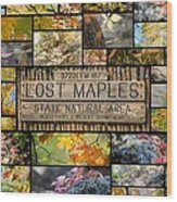 Lost Maples Collage Wood Print
