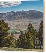 Lost River Mountains Wood Print