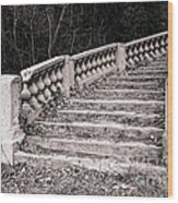 Lost Staircase Wood Print by Olivier Le Queinec