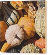 Lots Of Little Gourds Wood Print