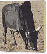Lotta Bull Wood Print