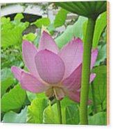 Lotus And Bridge Wood Print