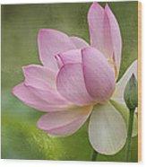 Lotus Dance Wood Print
